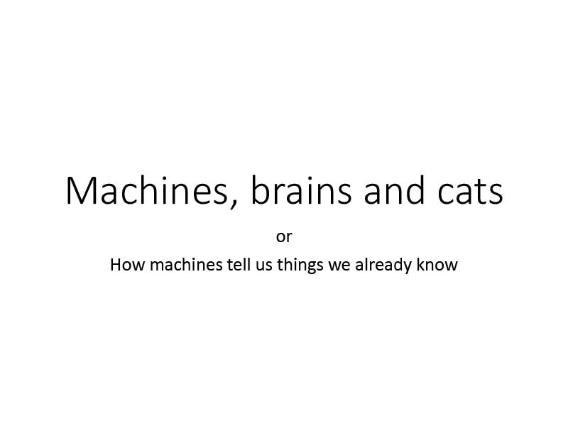 Malte Lorbach | Machines, brains and cats